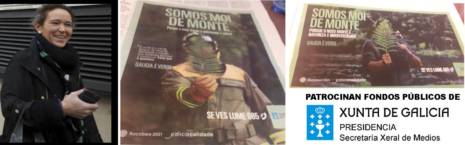 Incendios - Xornal Galicia